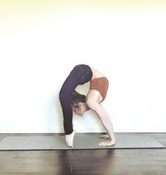 Contortion Bridge, Active Flexibility