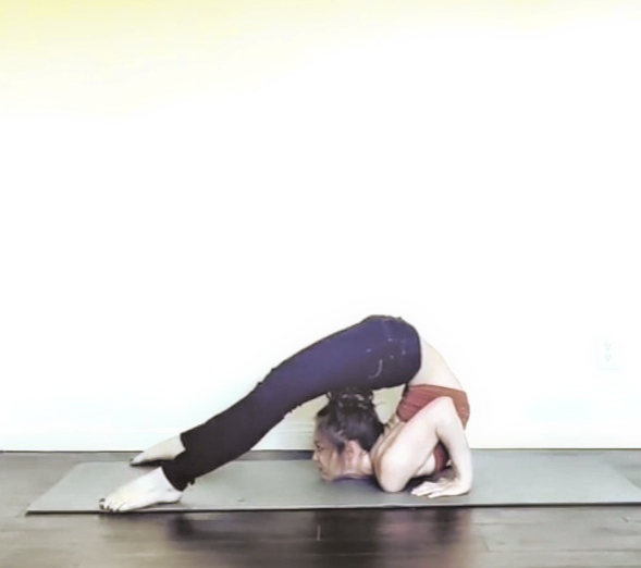 Contortion cheststand, pancake pose